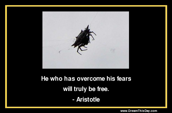 Aristotle Human Behavior Quote Posters: Aristotle Quotes And Sayings