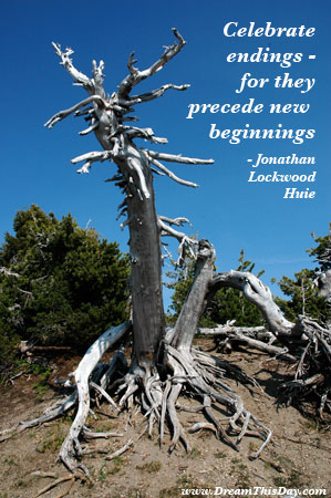 Get Over It Quotes. Celebrate endings - for they precede new beginnings.