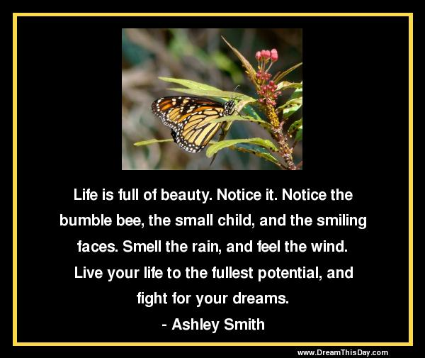 Quotes About Living Life To The Fullest Simple Quotes About Living Life To The Fullest  Live Life To The Fullest
